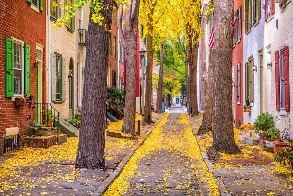 Local neighborhood in Philadelphia, PA