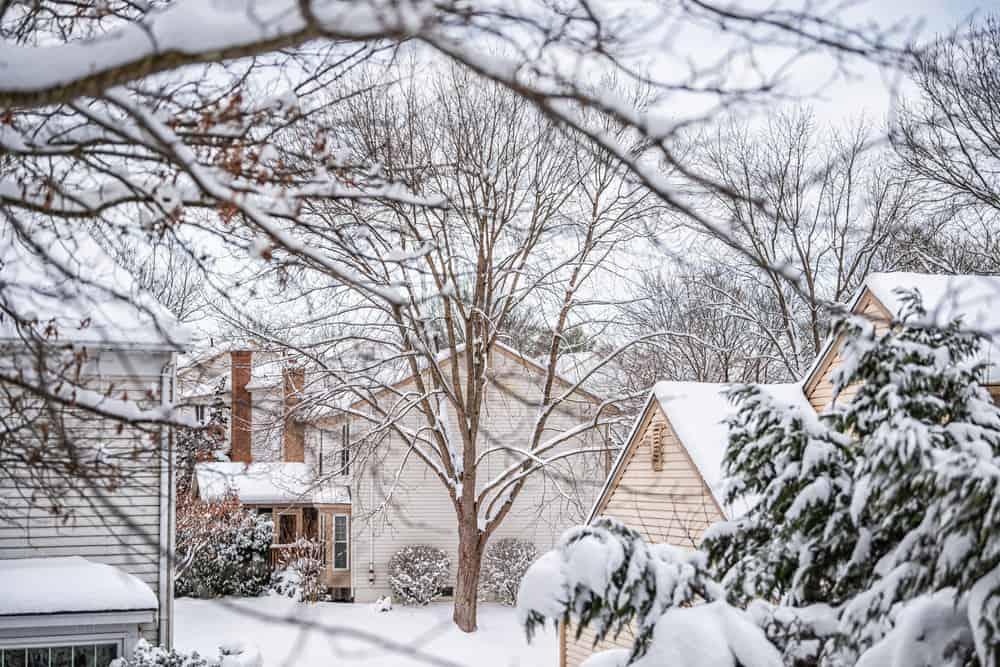Snowy weather in Oakton, VA