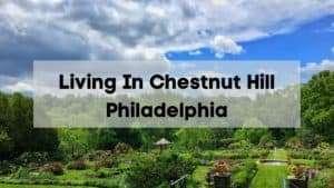 living in chestnut hill